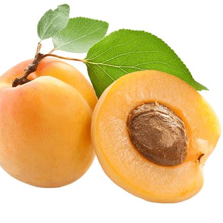 noyaux d'abricot